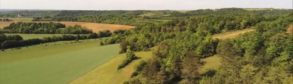 HVL vue panoramique depuis terrain net