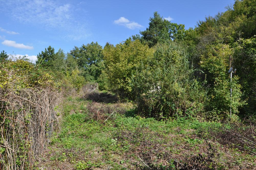 actu_02_terrain sept.2011