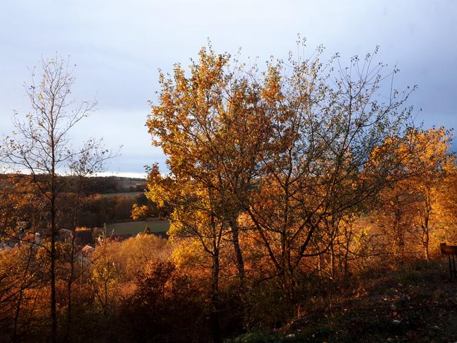 ext automne
